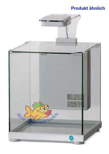 mein aquarium laden wir fische lieben es. Black Bedroom Furniture Sets. Home Design Ideas
